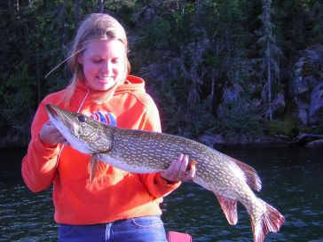 Northern Pike Fishing on Trout Lake